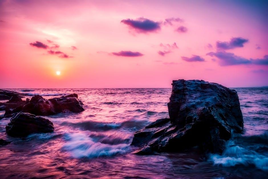 Rozi ocean 3