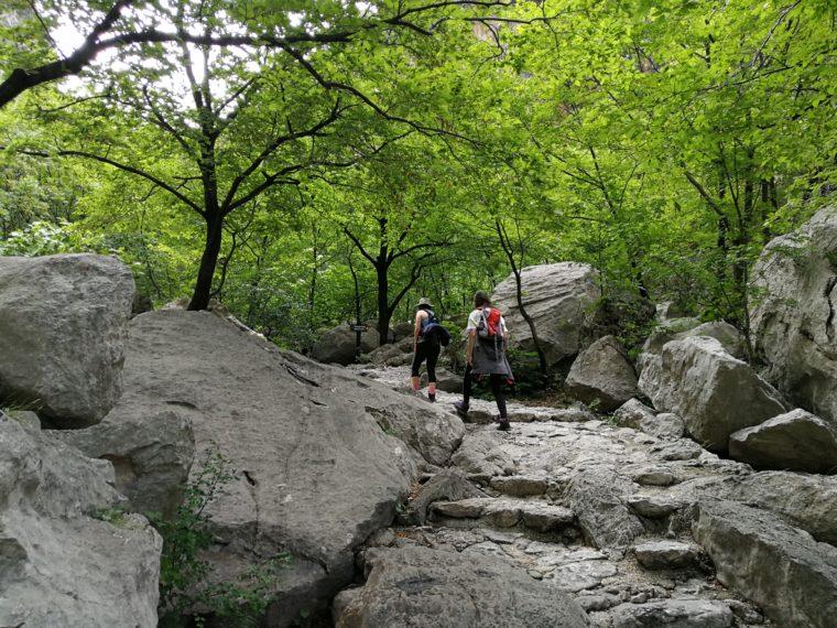 Mala Močila i pralažištipavčići (2. dio pakleničke planinarske kronike)