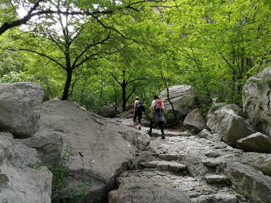 Stepenište u planini