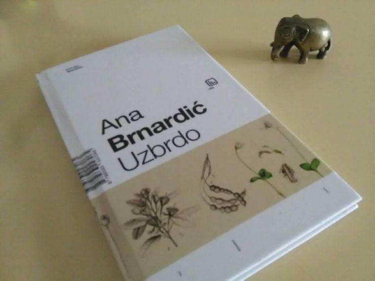 "Recenzija: Zbirka poezije ""Uzbrdo"" Ane Brnardić"