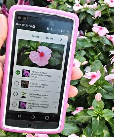 Aplikacija za biljke 2