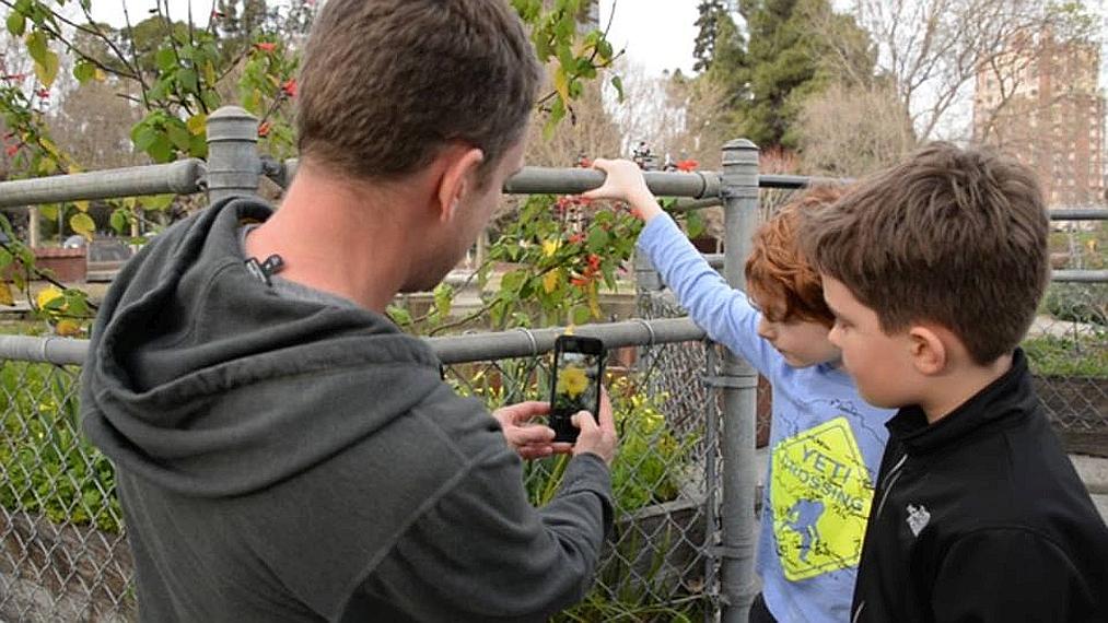 Evo aplikacije koja vam u tren oka pomaže identificirati sve vrste bilja!