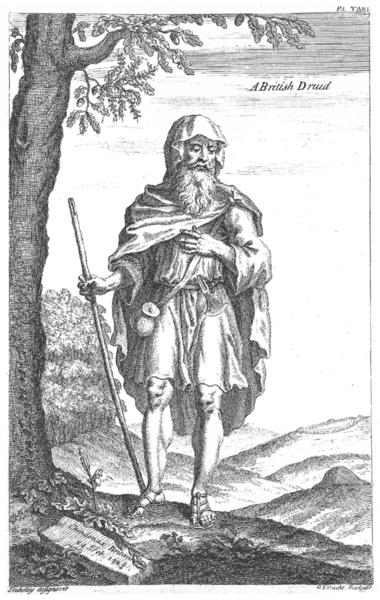 Keltski druid