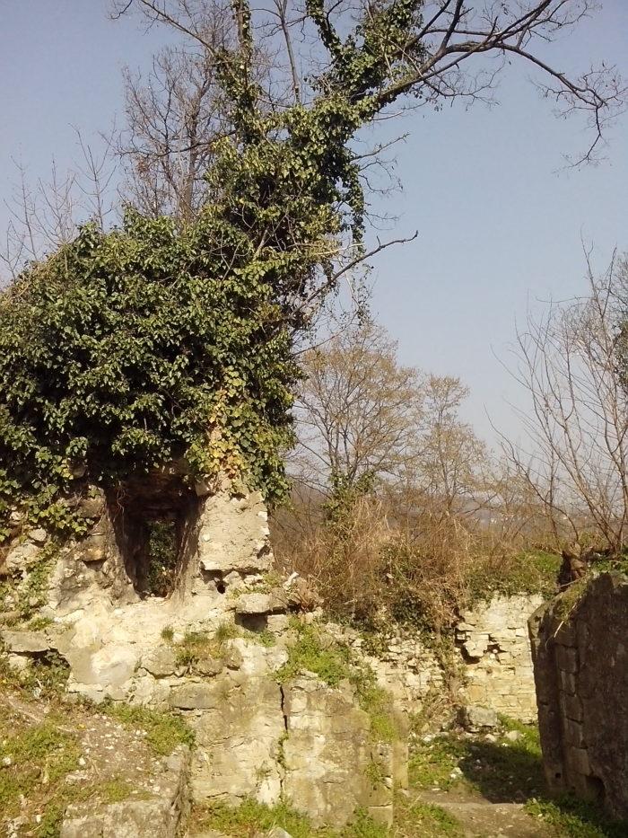 Susedgrad 2