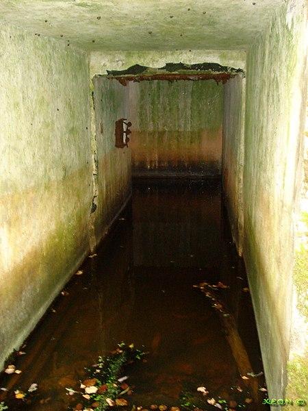 Podzemni bunker 8