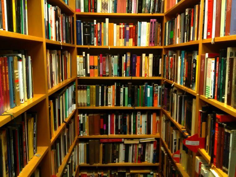 Turneja po knjižnicama, iduća postaja: Knjižnica Gajnice