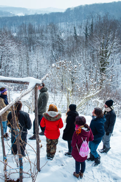 Evo kako je bilo na Art Labovoj pjesničkoj eko-rezidenciji (puni izvještaj iz predivnih šuma Vukomerića)