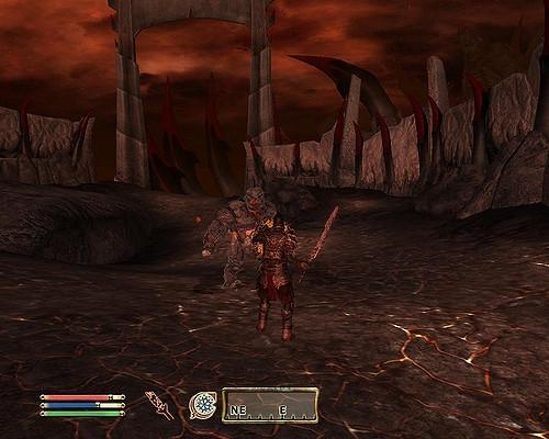 Oblivion 8