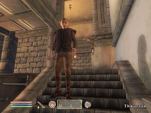 Oblivion 9