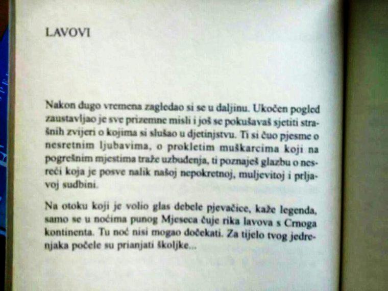 Alen Galović Lavovi