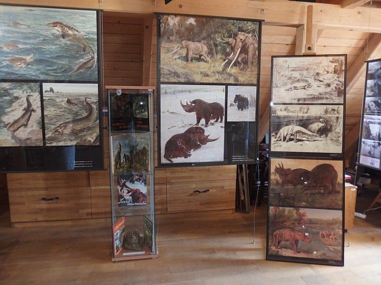 Doznajte više o češkom umjetniku Zdeněku Burianu koji se proslavio slikanjem dinosaura