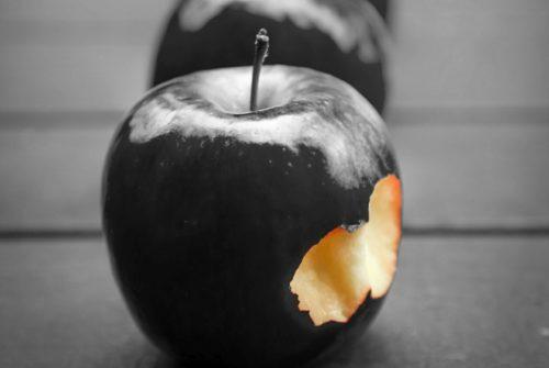 Rijetka sorta crnih jabuka koje izgledaju kao rekvizit iz filma o Snjeguljici, no zapravo su odlične