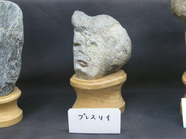 Kolekcija ovog muzeja sastoji se isključivo od kamenja koje podsjeća na ljudska lica