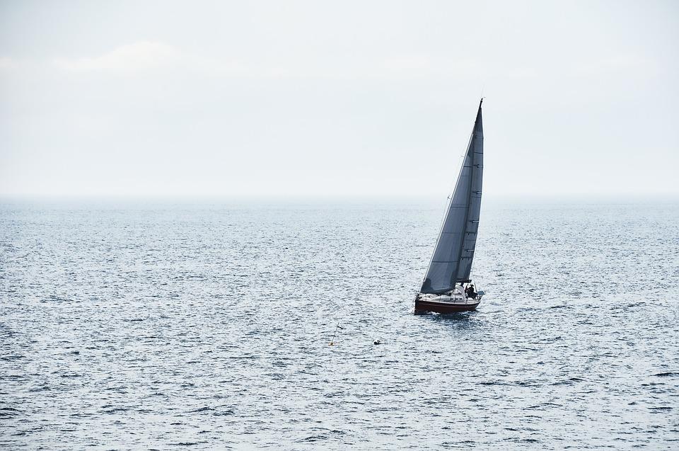 Skiper jedro