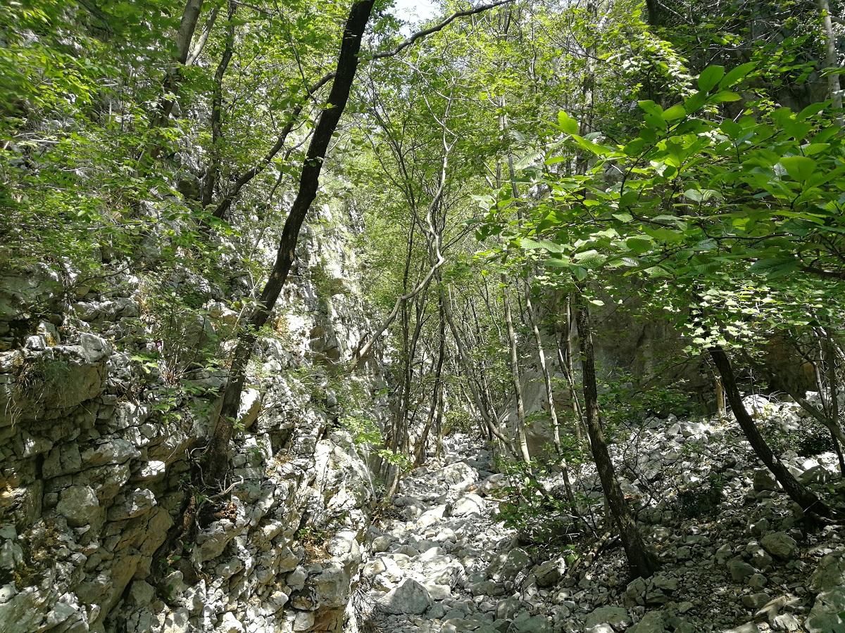 Grobničke Alpe 5