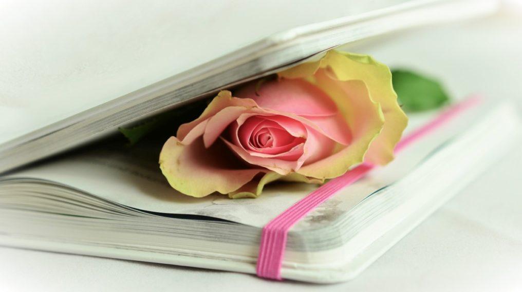 Ljubavna poezija 2