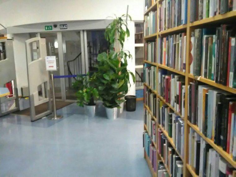 Knjižnica Božidara Adžije 8