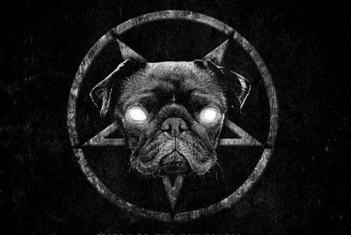Pjevači ovih ekstremnih metal bendova prave su životinje! Doslovno! Imaju krzno i perje. WTF?