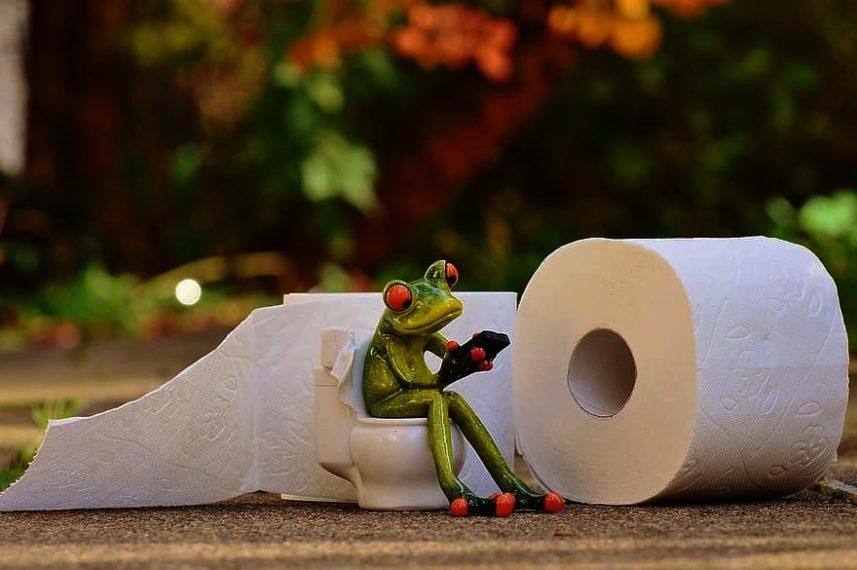 Idealno štivo za odlazak na WC: Fascinantna i nikad aktualnija povijest tariguza!