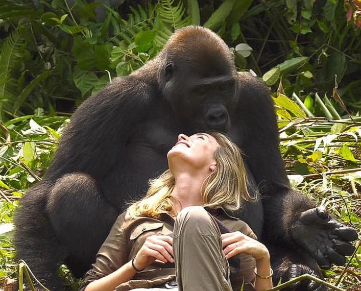 Dirljivi video: Kako se sprijateljiti s gorilom