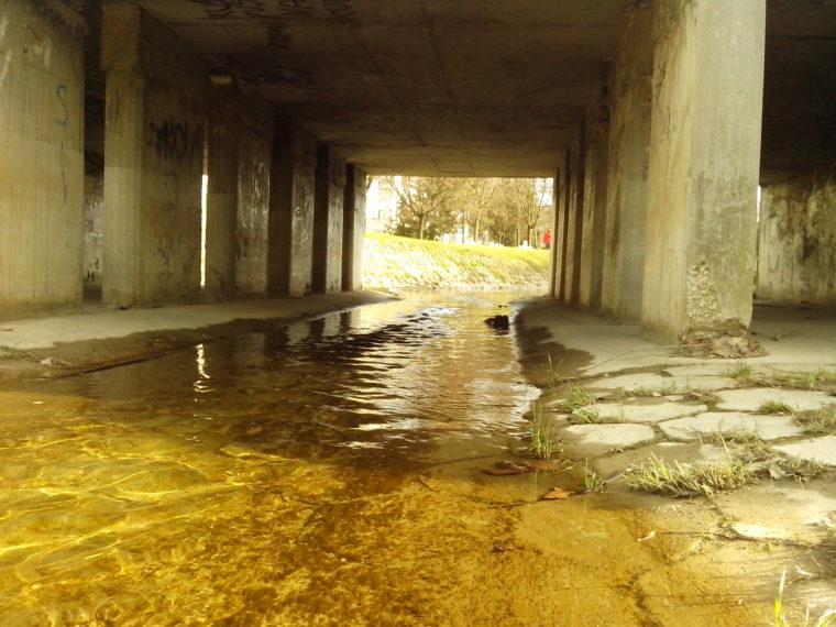 Slijeđenje potoka (antiputopis, 2. dio)