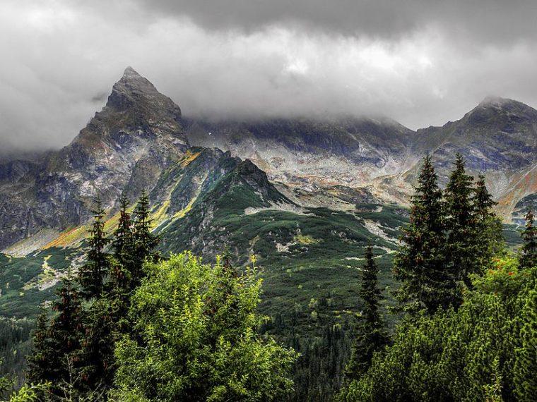 Planinara na vrhu planine dočekalo neočekivano krznato društvo