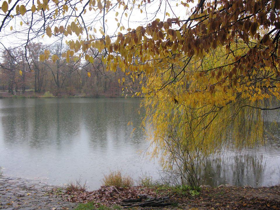 Zajedno pobliže upoznajmo predivna maksimirska jezera