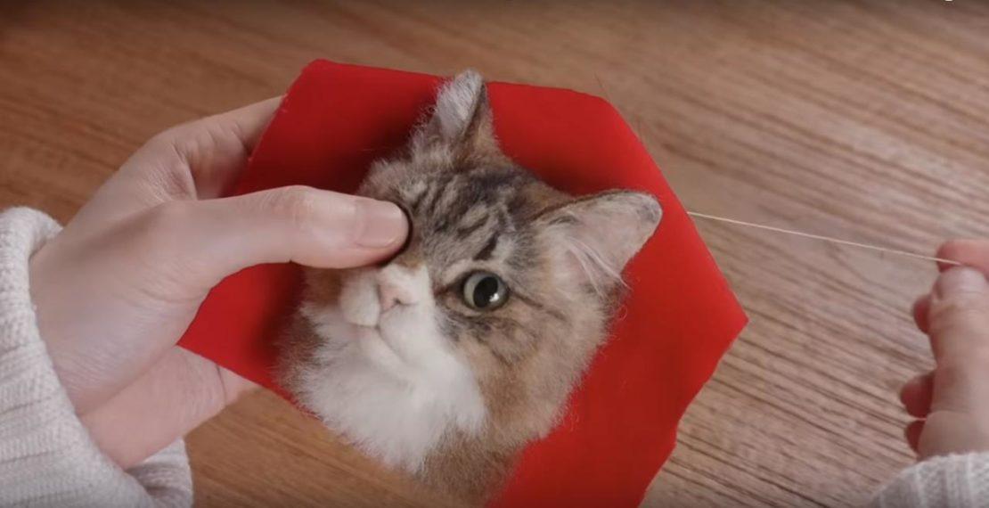 Želite li posjedivati realističnu 3D bistu svoje mačke?