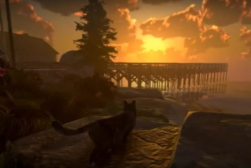 U ovoj igri ćete istraživati ogromnu otvorenu mapu iz perspektive čopora mačaka